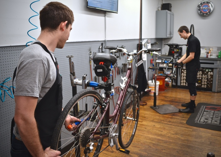 Hall Bicycle, Expert Bicycle Service and Repair, Cedar Rapids, Iowa, Trek Bikes