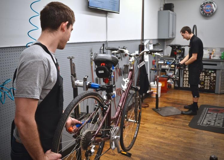 Hall Bicycle, Expert Bicycle Service and Repair, Cedar Rapids, Iowa, Trek Bikes