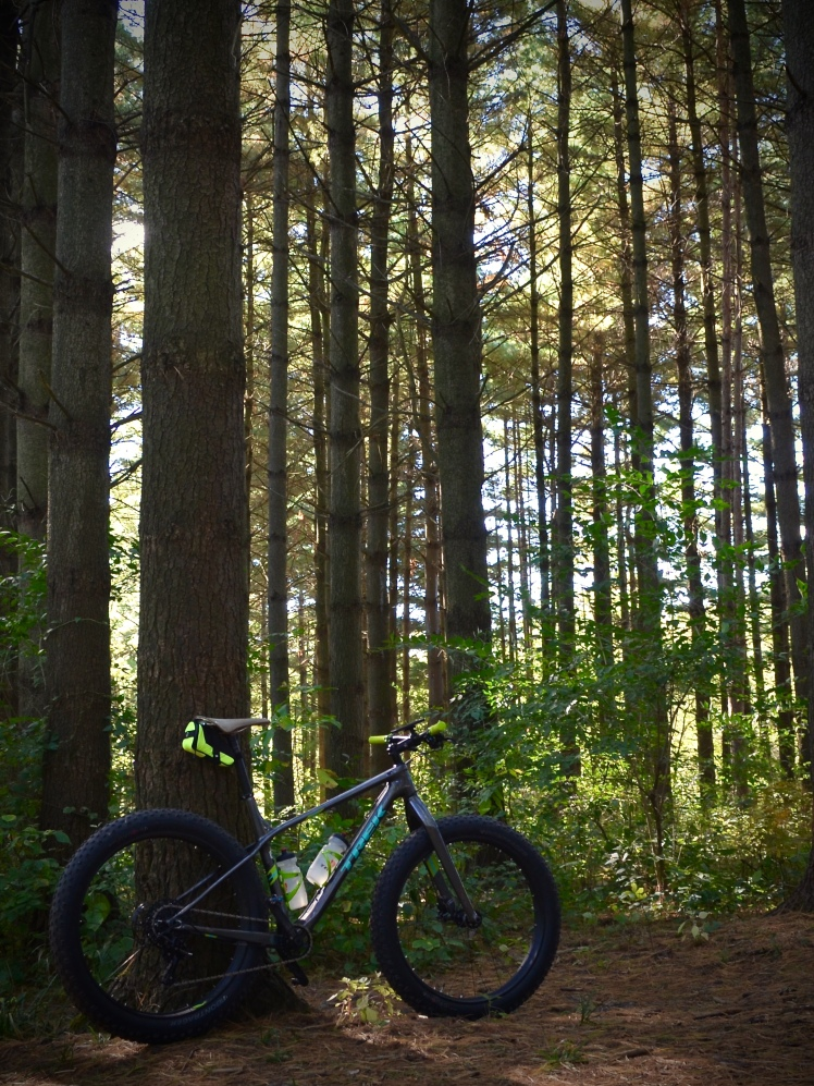 Trek Farley 9.6 exploring deep in the woods.