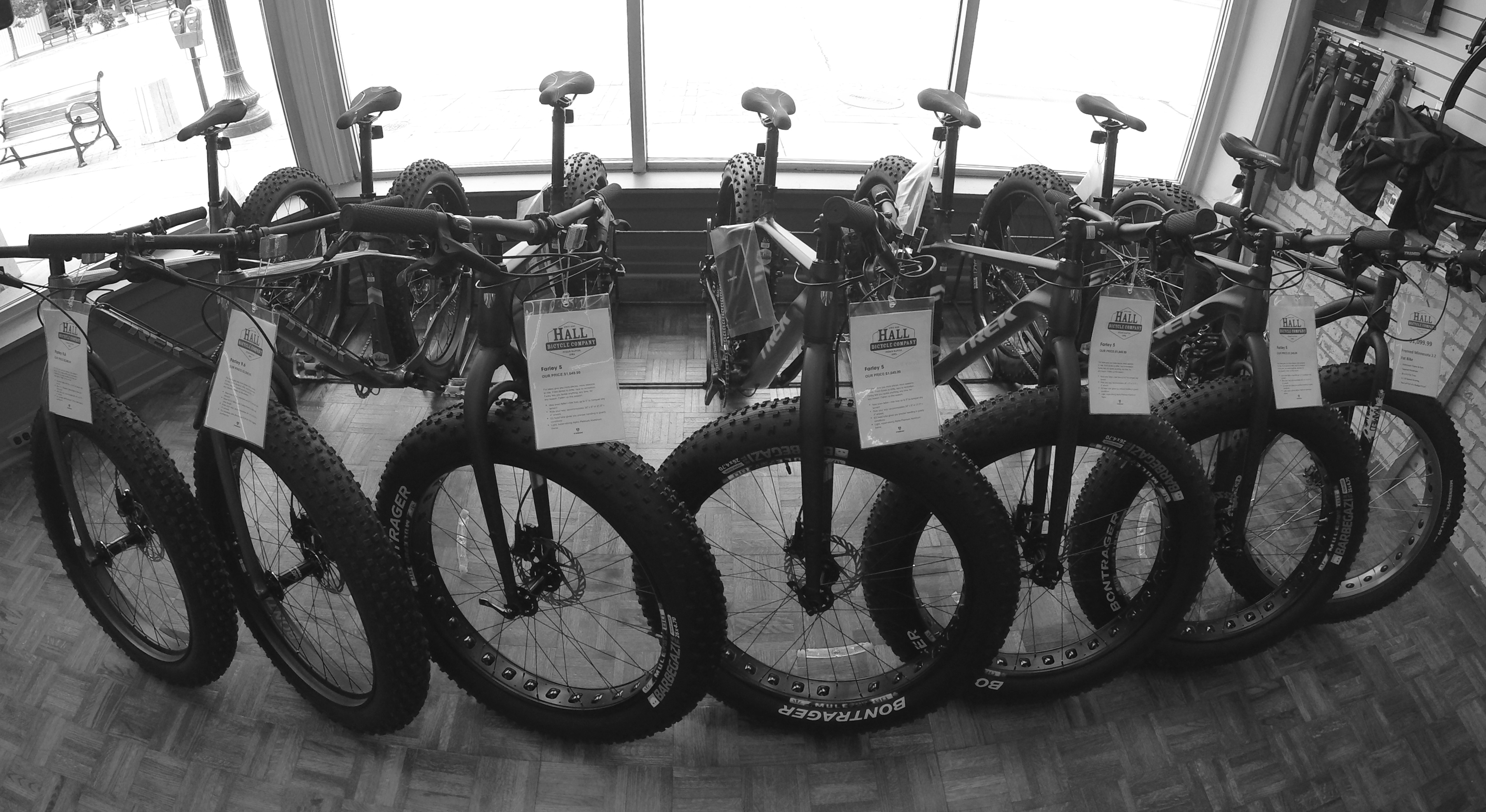 Fat Bikes What S The Deal With These Things Hall Bicycle Company